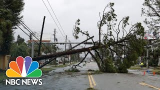 Scenes From Hurricane Michael\'s Destruction In The Florida Panhandle | NBC News