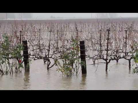 Napa County Flood 2017  |  I Love The Rain, But......