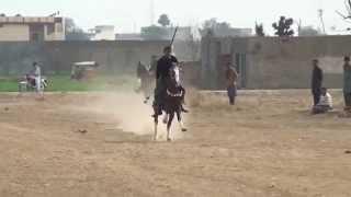 RIDERS OF POTHWAR HAIDRY NEZABAAZ CLUB  Gujar Khan