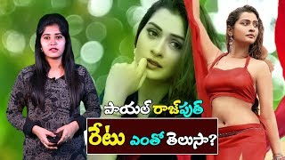 Payal Rajput Remuneration For One Day | RDX Love Movie | #Payal Rajput | Top Telugu Media