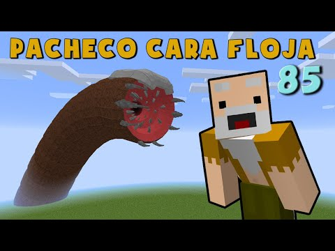 Pacheco Cara Floja