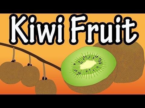 Health Benefits of Kiwi Fruit?