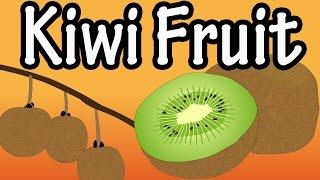 Health Benefits of Kİwi Fruit?