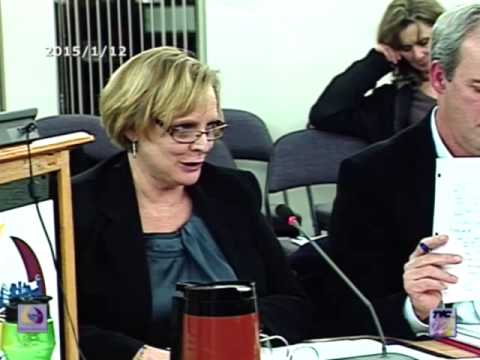 2015/01/12 Comité Plénier/Committee of the Plenary Meeting