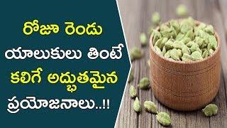 రోజూ రెండు యాలుకులు తింటే కలిగే అద్భుతమైన ప్రయోజనాలు..!!    Health Benefits Of Eating Cardamom Daily