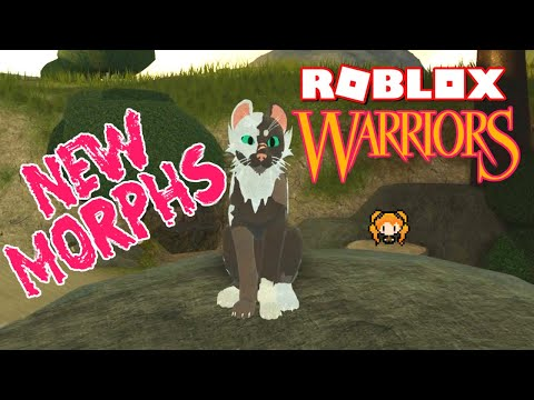 Cobra Clan Street Fighters Roblox Roblox Dragon Adventures Dueling Prehistoric Map News Sorting Your Dragons My New Face Mask Youtube