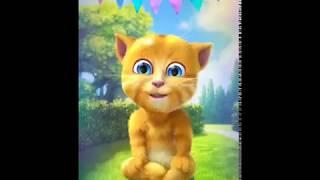 Eid mubarak to all friends^FUNNY CAT VIDEO