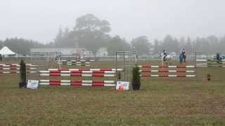 Showjumping from Springston Trophy 2013
