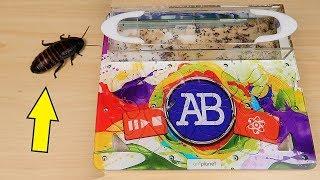 Реакция Муравьев на огромного таракана! Накладки на формикарий с логотипом Alex Boyko.