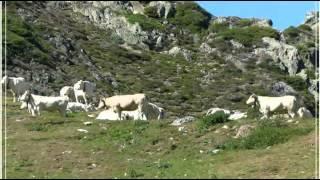 Vidéo du Lac d' Artouste et son petit train ( tren), le plus haut d'Europe, Pyrénées
