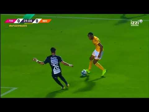 Especial Andre-Pierre Gignac | Tigres UANL 3 - 2 Necaxa | LIGA Bancomer MX