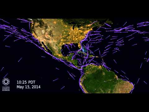How Quickly Do Ships Cross the Oceans? (North America) | California Academy of Sciences