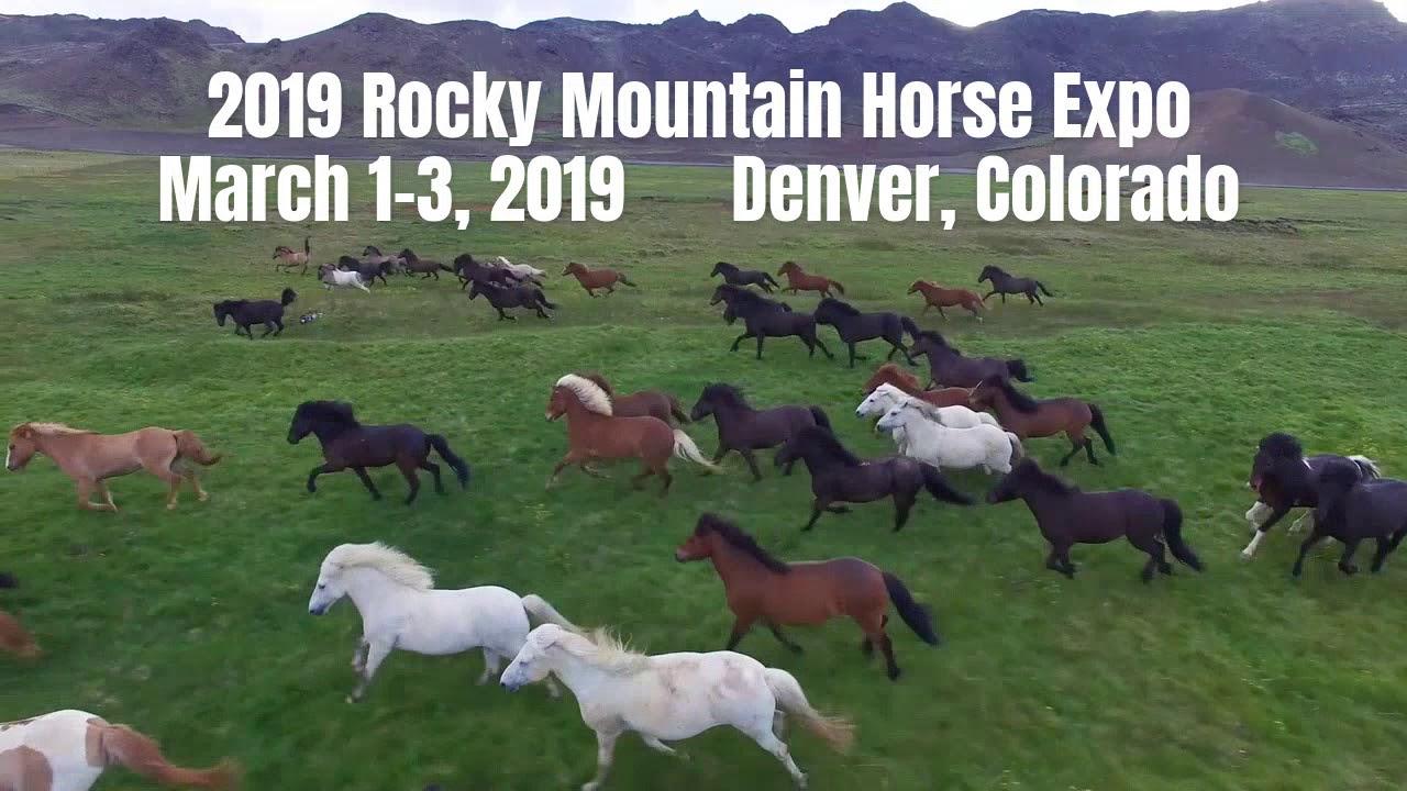 2019 Rocky Mountain Horse Expo - Video Ad