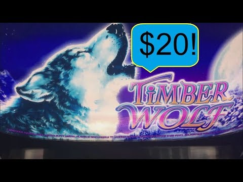 HIGH LIMIT $20 BONUS ON TIMBERWOLF SLOT MACHINE