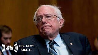 Does Bernie Sanders Have A Shot? | NBC News Signal