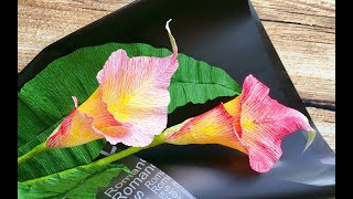 ABC TV | How To Make Calla Lily Paper Bouquet Flower From Crepe Paper #1 - Craft Tutorial