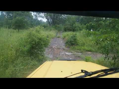 P3205179   Welcome to the jungle Majete NP