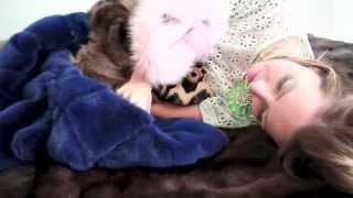 We Love Fur - fur coat blog