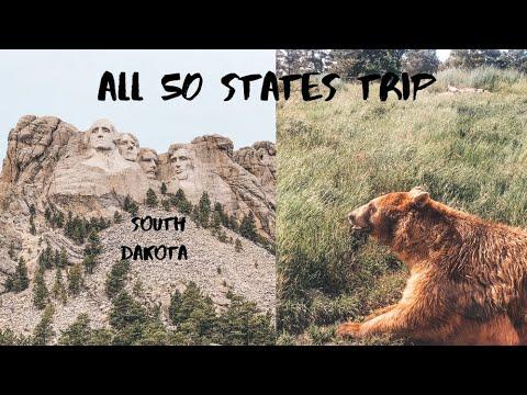 МЕДВЕЖЬЕ САФАРИ И ГОЛОВЫ В СКАЛЕ - МОЯ МЕЧТА СБЫЛАСЬ! День 62-63, Южная Дакота    ALL 50 STATES TRIP