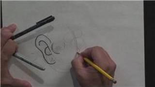 Cartooning : How to Draw Human Ears, Cheeks & Chin in Cartoons