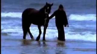 Enya  - On your Shore.mp4