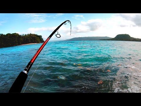 Finally Caught The Fish Of My Dreams! (Santo Vanuatu - Part 1)