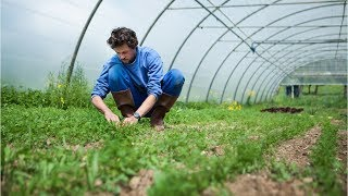 Agricultural and Food Science Technician Career Video