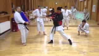 Тренировка Шотокан каратэ. Кидзами. Тренирует Олег Цой(СПК