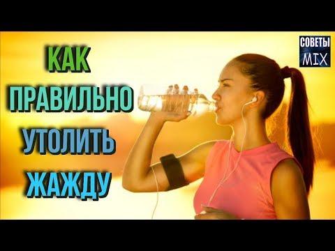 Полезные напитки, которые действительно утоляют жажду в жару