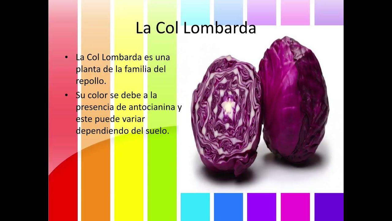 Que es el ph y el uso de la col lombarda como indicador for Como cocinar col lombarda
