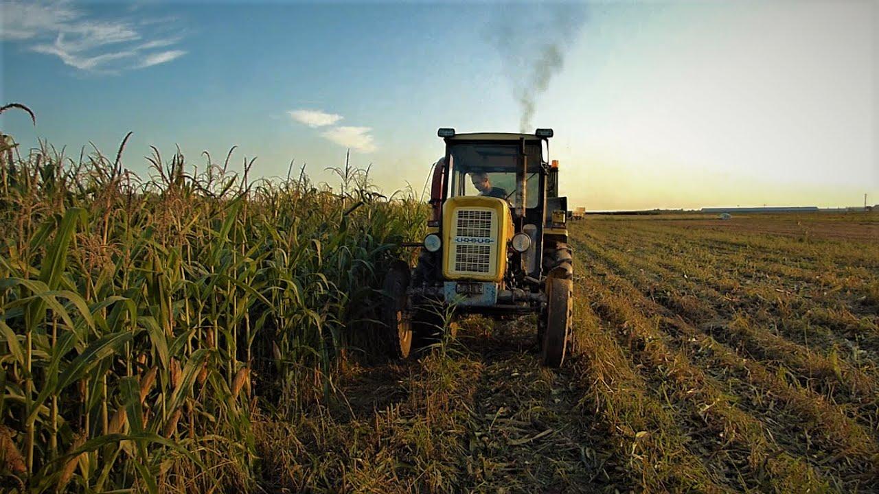 KISZONKA z #POLSKĄ_Mocą ✪  URSUS 3514✪  Farmtrac 685dt ✪ Ursus c360