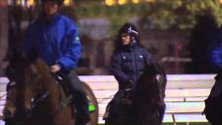 Mrc Trackside Tv - A Week In The Life Of Jockey Mark Zahra