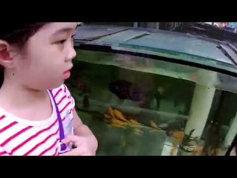 [ WET ] Fish Farm Tour in Singapore - Pasir Ris