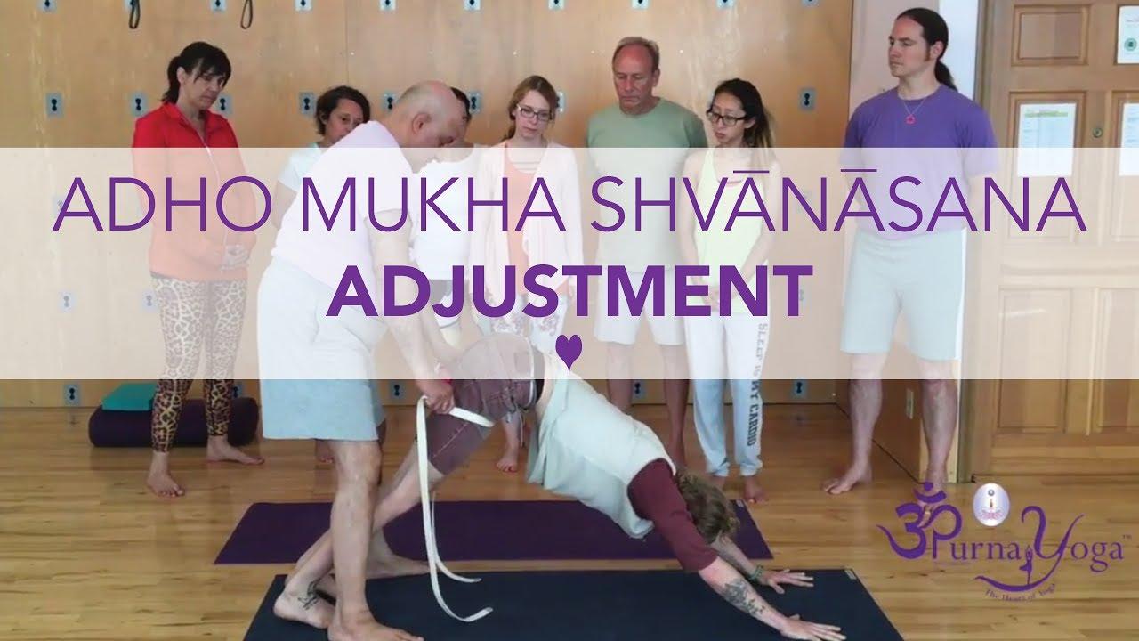 Purna Yoga College - Adho Mukha Shvanasana Adjustment ...