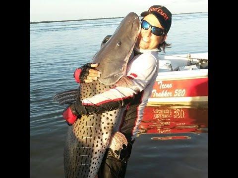 Programa Mundo da Pesca  PGM 40  Pintado Gigante Argentina