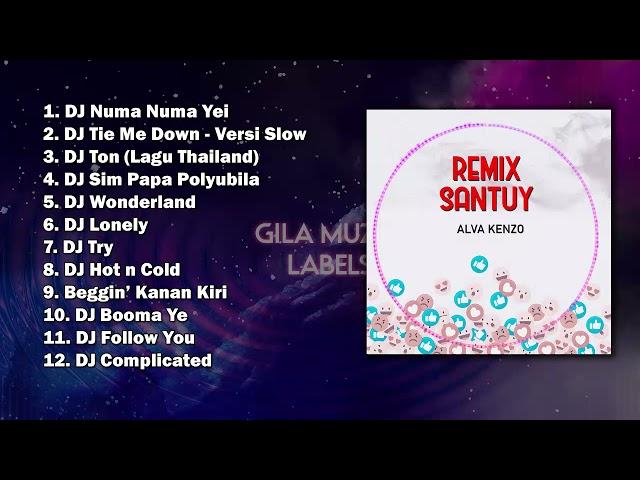 Remix Santuy Full Album + 5 Remix | Alva Kenzo | DJ Numa Numa Yei, Sim Papa Polyubila, Kanan Kiri