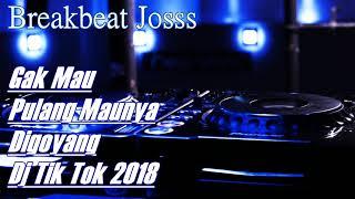 Download lagu Gak Mau Pulang Maunya Digoyang Dj Tik Tok 2018 MP3