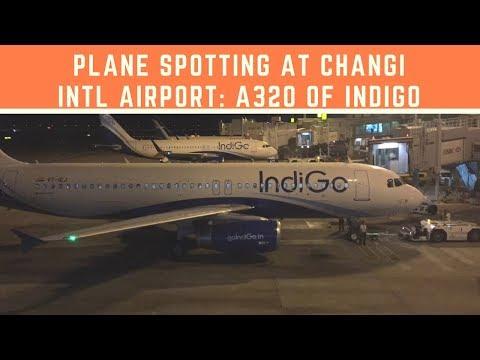 Plane Spotting at Changi International Airport (SIN): Review Airbus A320 family of Indigo at apron