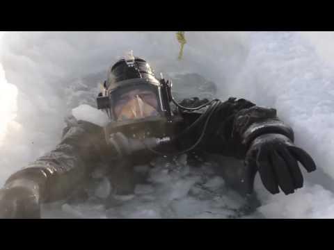 Navy and Coast Guard Divers At ICEX 2016