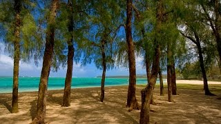 South of Eden Beachfront Villa in Riambel, Mauritius