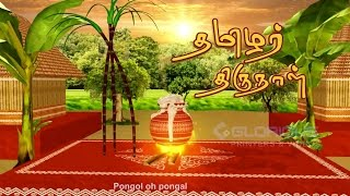 THAI PONGAL - Tamil Harvest Festival celebration  பொங்கல்