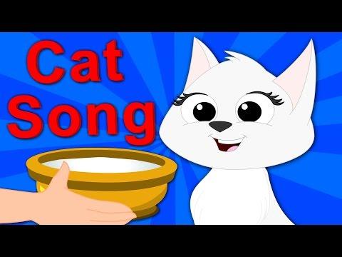 Cat Song | Nursery Rhymes | Kids Rhymes | Baby Songs | Video For Childrens