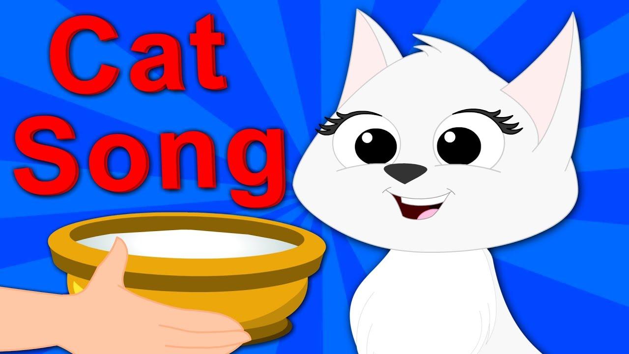 why cats vomit