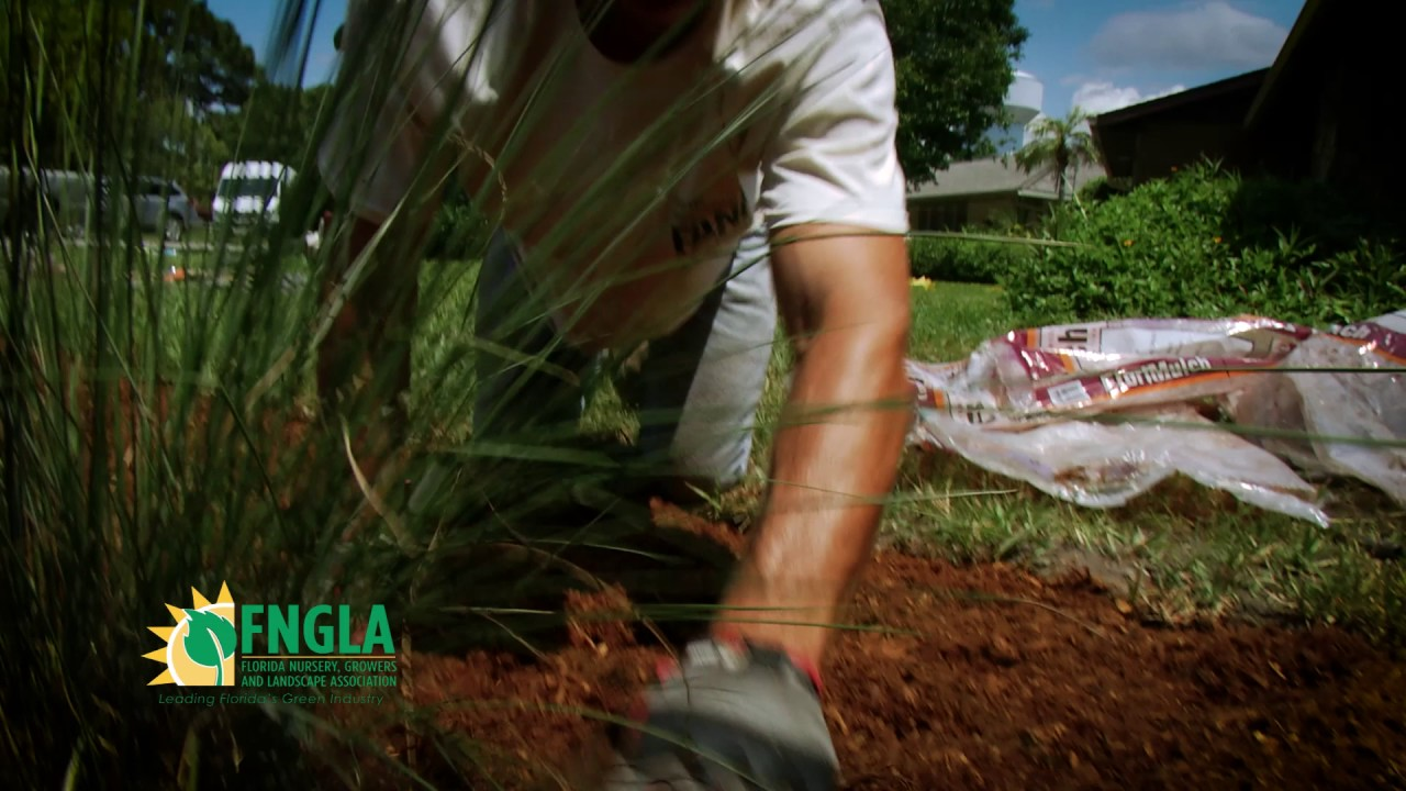 Florida Nursery Growers Landscape Ociation 2017 Commercial Spot