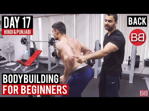 | Day 17 | Complete BACK Workout for Beginners! (Hindi / Punjabi)