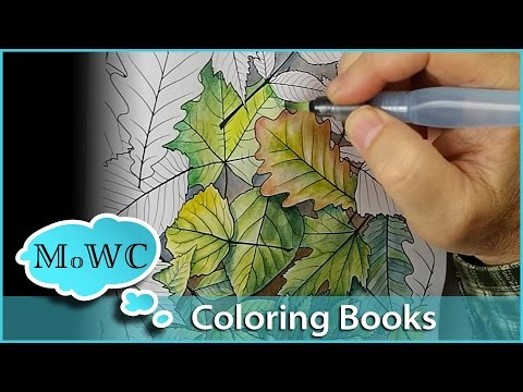 Coloring With Watercolor In Adult Coloring Books