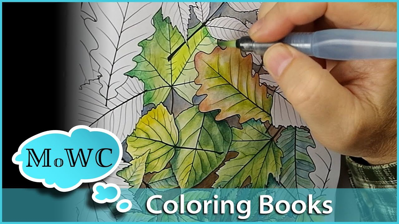 Adult Watercolor Coloring Books With Pages