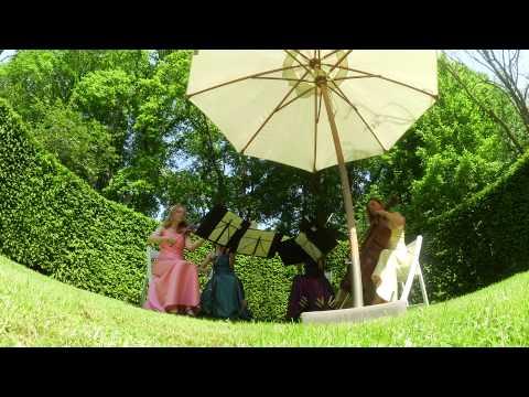 Strijkkwartet, string quartet Canon van Pachelbel / Don't look back in anger van Oasis