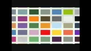 "Nippon Paint - ""Power Of Colour"""
