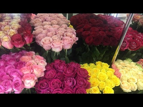 Send Roses To Yerevan, Armenia